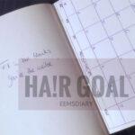 Diary Talk |Hair Goals 2017